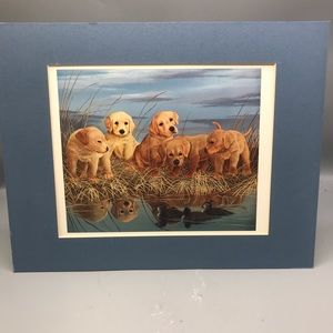 Adorable 5 Puppies By The Pond Picture